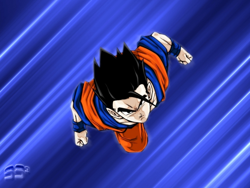 dragon ball gohan. dragon ball z wallpapers