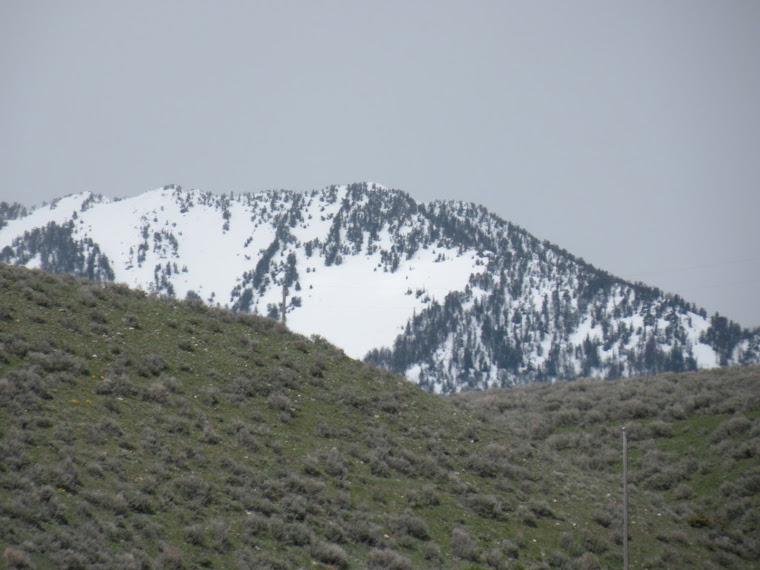 April / May 2008