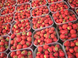 Fresas con tratamiento postcosecha