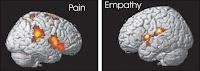 pain empathy hlrg