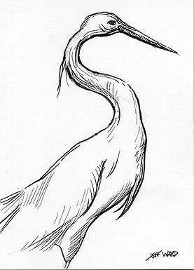 egret pen and ink