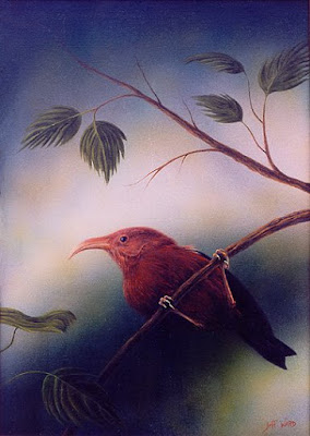 scarlet i'wi bird painting