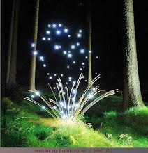cahaya alam 5