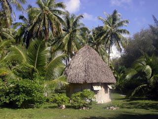 polynesian home plans