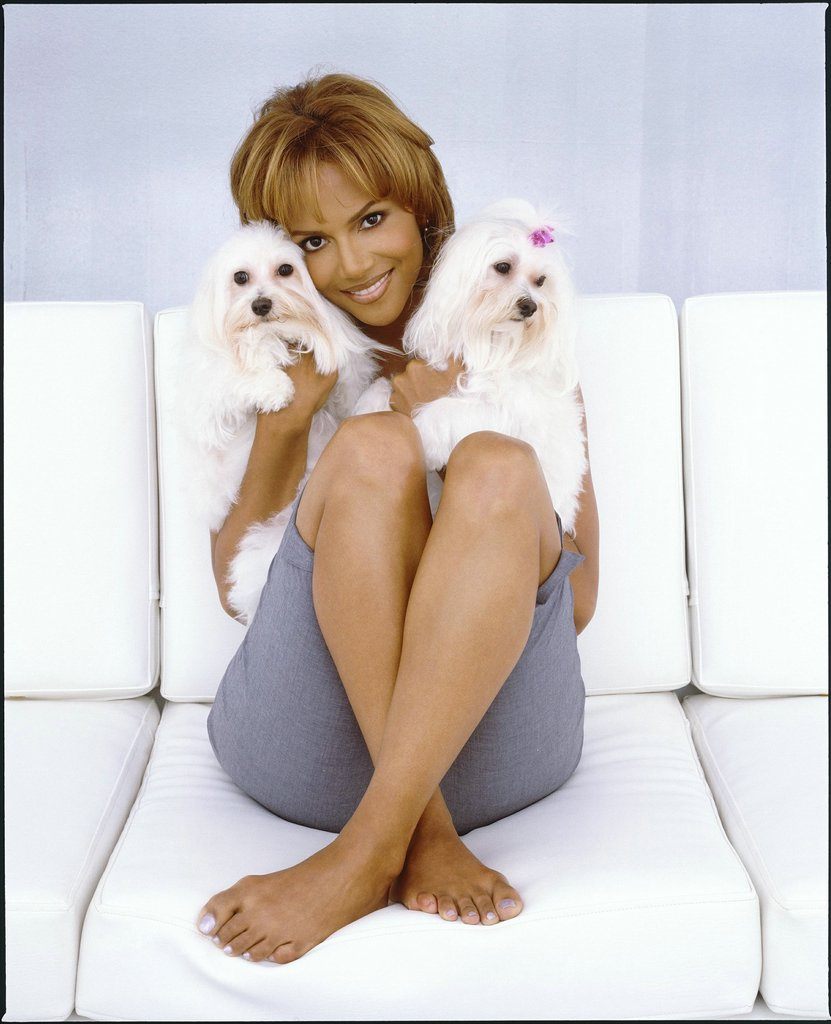 share point 2011 halle berry feet