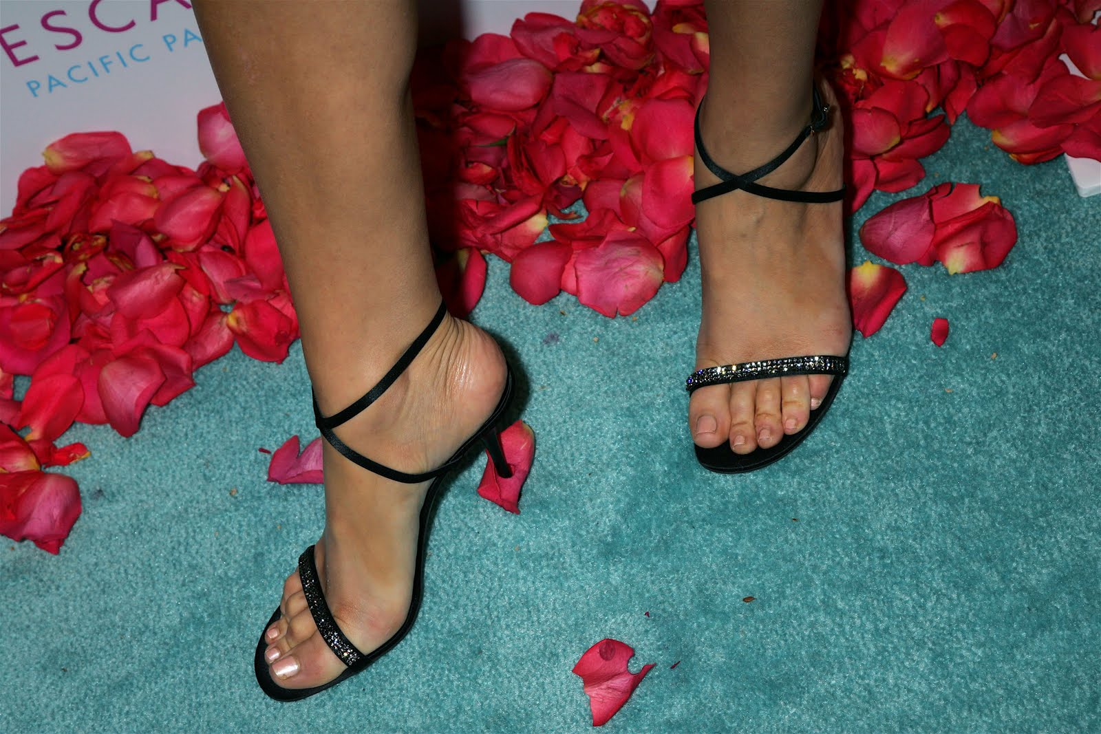 http://2.bp.blogspot.com/_UaLWp72nij4/TAAoRRICYQI/AAAAAAAANFc/pSpsqFP3AoA/s1600/maria-menounos-feet-2.jpg