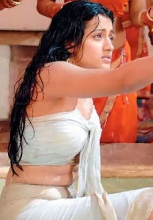 Hot Collections of Trisha, Tamil telugu actress photo gallery, trisha krishnan, hot trisha