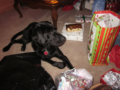 Dagan lying on the carpet, surrounded by presents