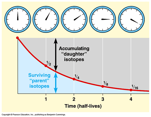 use this figure to explain the concept of radiometric dating Roll the dice & use radiometric dating to find out this figure also illustrates how to use a decay curve to figure the time since terms and concepts atoms.