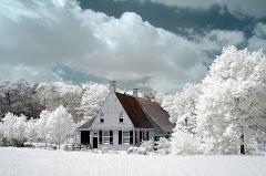 06 vine iarna