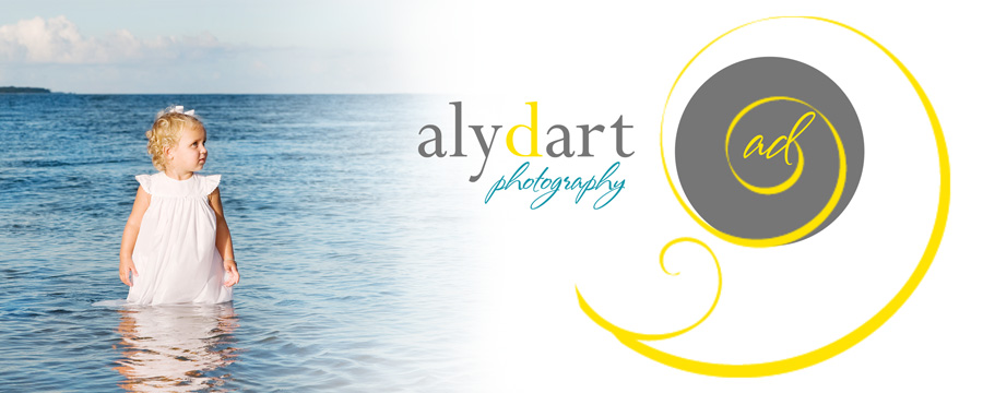 Alyson Dart Photography
