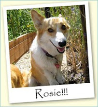 Rosie!