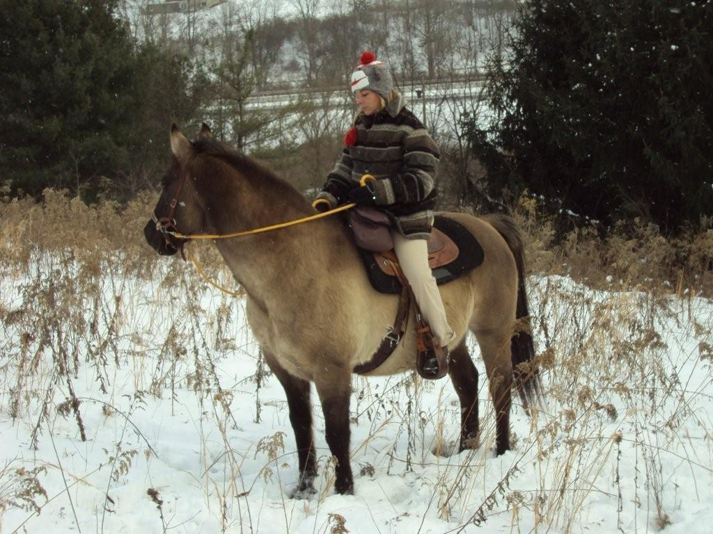 A Horses Hoofprints..