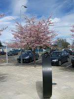 Es ist Frühling in NZ
