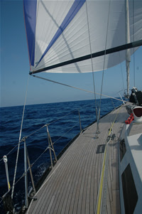 event horizon spinnaker sailing