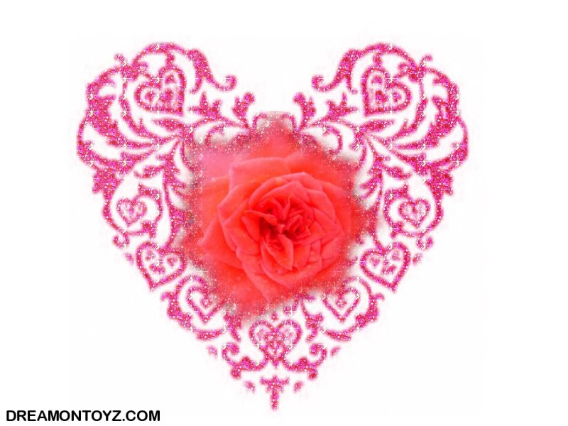 wallpaper heart rose. with red rose wallpaper