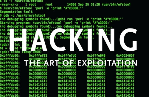 an introduction to the issue of hackers on the internet Increase of internet piracy and hacking - the area of atlanta contains millions of people, and each and this hacking issue is done by a team from pakistan that called 'team madleets' through hacking hackers can infect computers with various types or malware and viruses.