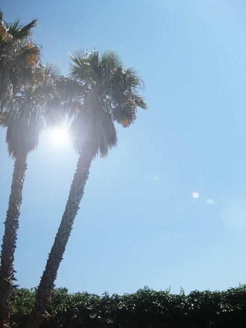 Haciendo algo, tomando el sol