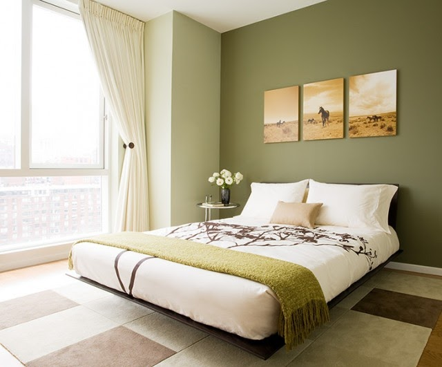 Green Accent Wall Extraordinary With Olive Green Bedroom Walls Images