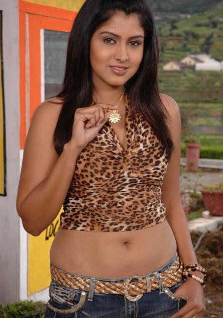 South indian actress navel show photos