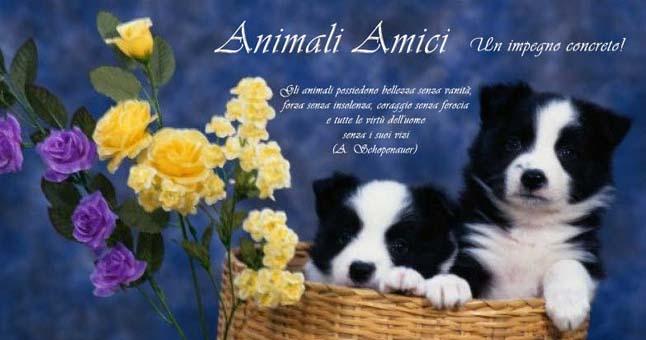 Animali Amici