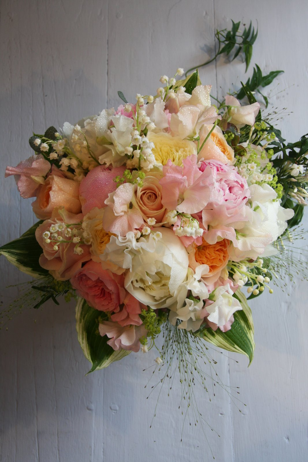 The Flower Magician Sweetest Pinks Delicate Apricots Lovely
