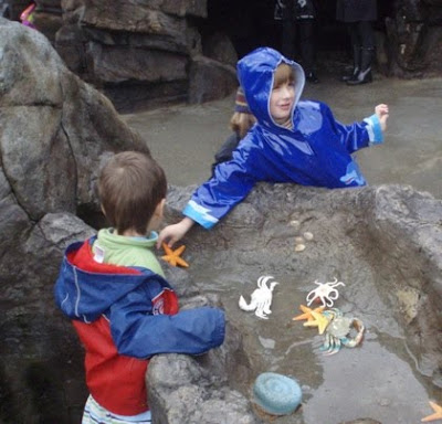 James, play with other kids at the Discovery Museum