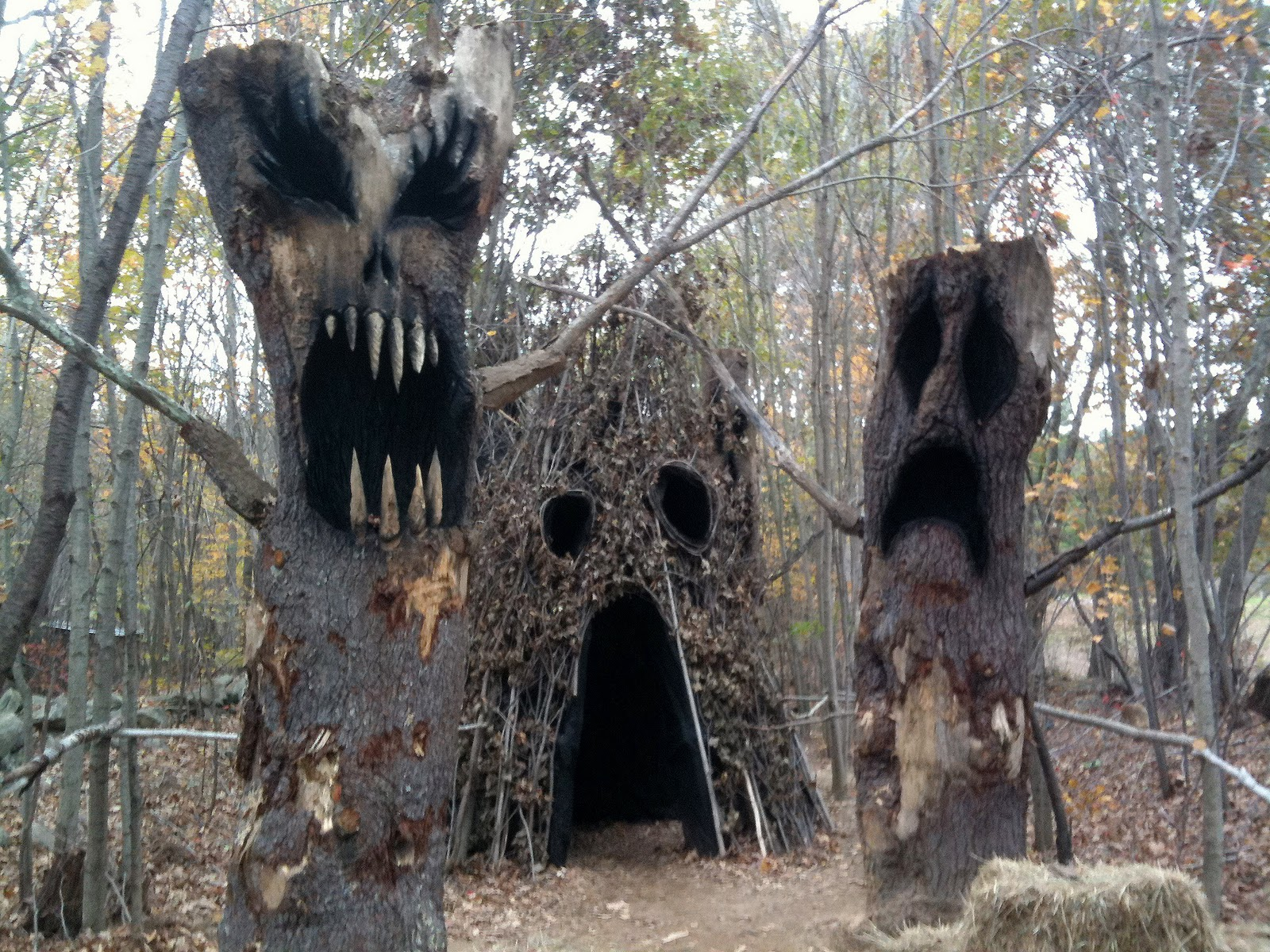 Backyard Haunted Forest Ideas : This weekend Mrs Bones and I made the pilgrimage to Haunted Overload