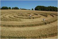 فنانو دوائر الحقول أثناء عملهم