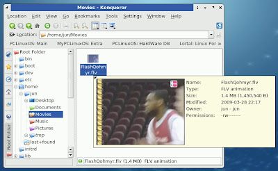 how to download youtube videos and playit using flash player