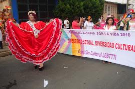 Diversidad sexual, Diversidad cultural,