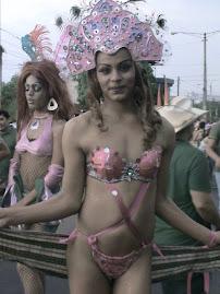 Belleza Transgenera en traje de fantasia
