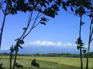 One Stop Blog Pemandangan Gunung Wilis