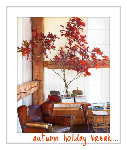 23qm stil wohnen leben bloggen oktober 2010 for 23qm stil