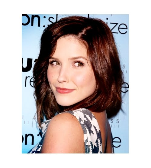 Sophia Bush on Craig Ferguson She's hott. She loves the environment (and the ...