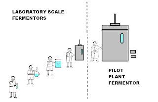 fermentation technology  teknologi penapaian   importance