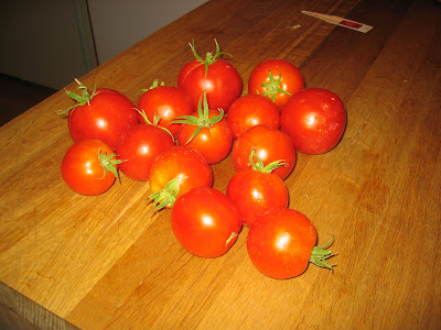 some of last year's tomatoes