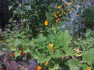 veggies mix with annuals and perennials
