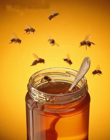 teraka randriantsoa les bienfaits de la cannelle et du miel. Black Bedroom Furniture Sets. Home Design Ideas