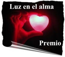 Luz enel alma Award