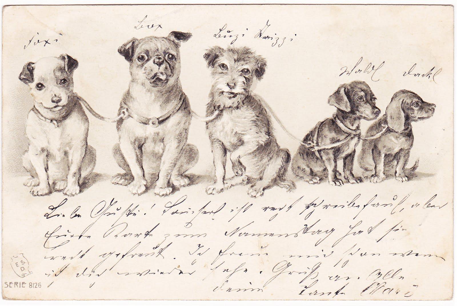 Seaside cottage freebie vintage hunde postkarte - Vintage bilder kostenlos ...