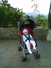 Ameer @ Cameron Highland Feb 09