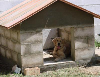 Sin compromisos modelos famosos viajes turismo anime - Como hacer una casa para perro grande ...