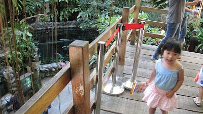 Manila Ocean Park: Oceanarium [April 2010] 3
