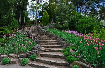 alee su scari in gradina lunii mai