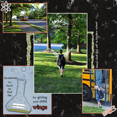 http://nwfotobug.blogspot.com