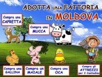 ADOTTA una FATTORIA in MOLDOVA