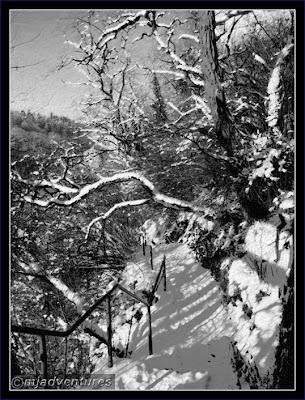 Schwarzwald_Snow