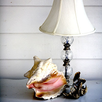 Decorate Living Room on My Sweet Savannah   Decorating With Shells