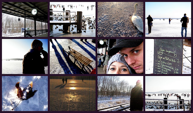 Berlín enero 2009
